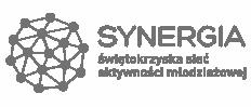 Świętokrzyska Sieć Aktywności Młodzieżowej SYNERGIA